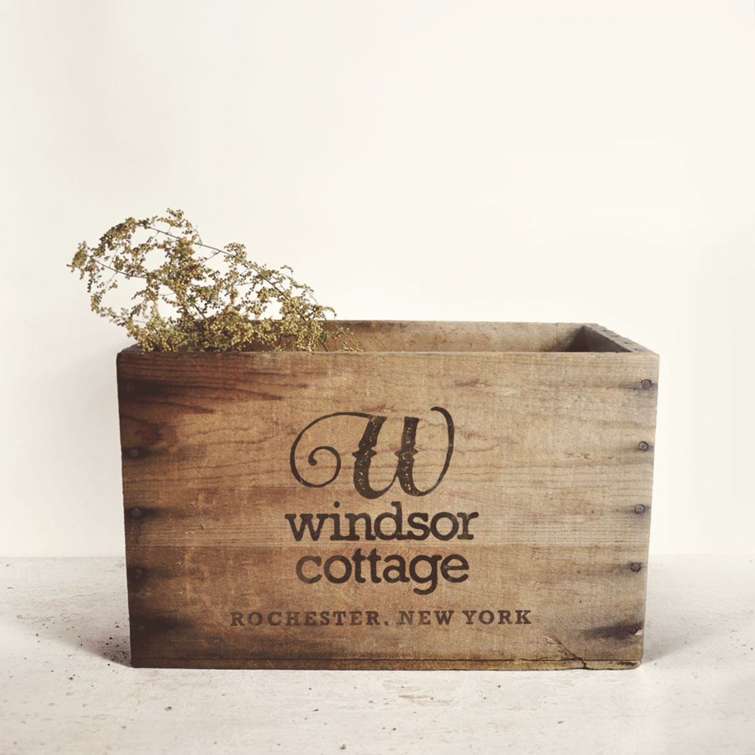 Photo of Windsor Cottage vintage box with logo and Rochester, New York type